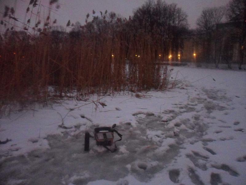 Мероприятия: (ECO PRO) #СТОП-РОТАН. Таврический сад, карательная вылазка или открытие сезона.