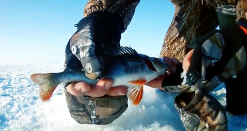 рыбалка река днепре