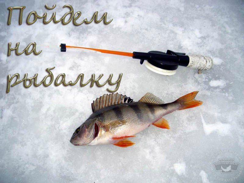 пойдем ловить рыбу