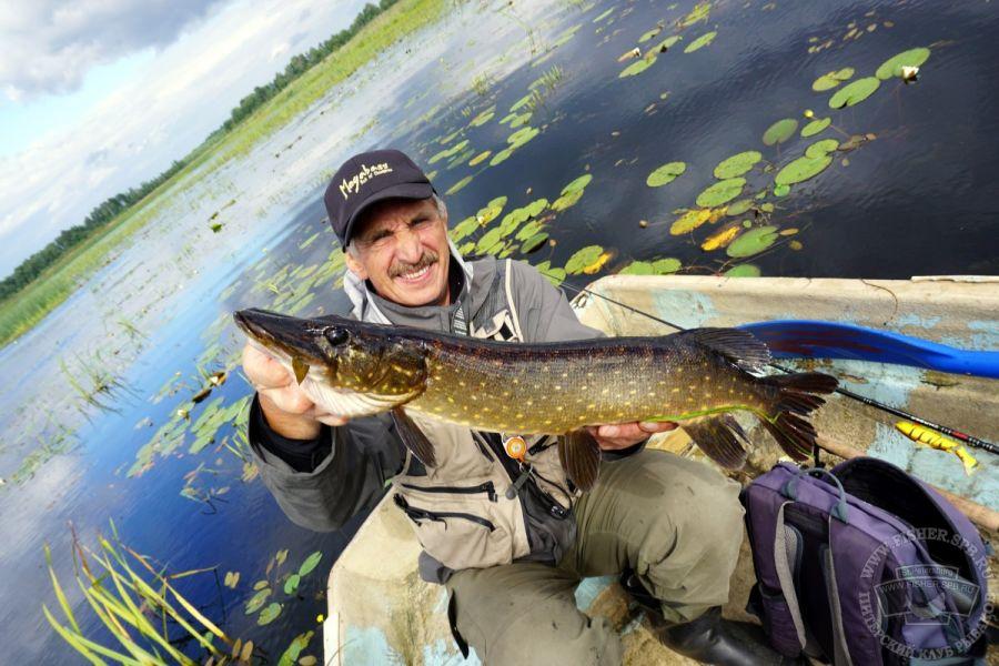 Прогноз клева рыбы в инкино колпашевский район