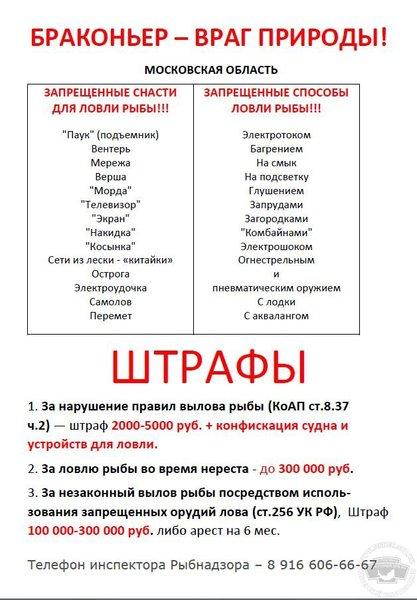 135975_y0mjm3.jpg.0b8d1da0e8511fac31595e26facf0503.jpg