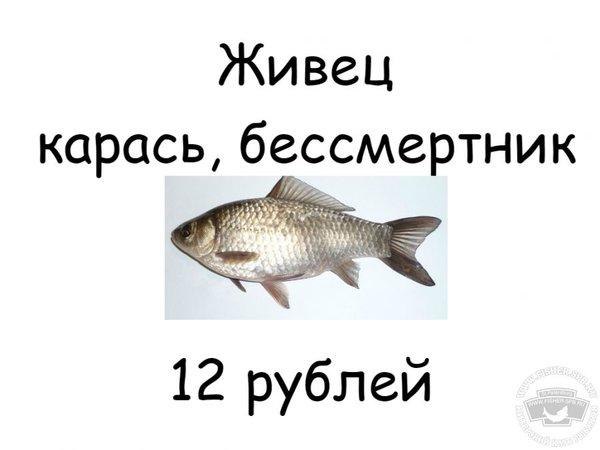 153057_mdbisi.jpg.618b5e2485e332a270188adf47fd2fb0.jpg