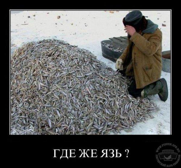 30865_dcc3ge.jpg.91f1b46f70a5eb2bd3437be2171c73cb.jpg
