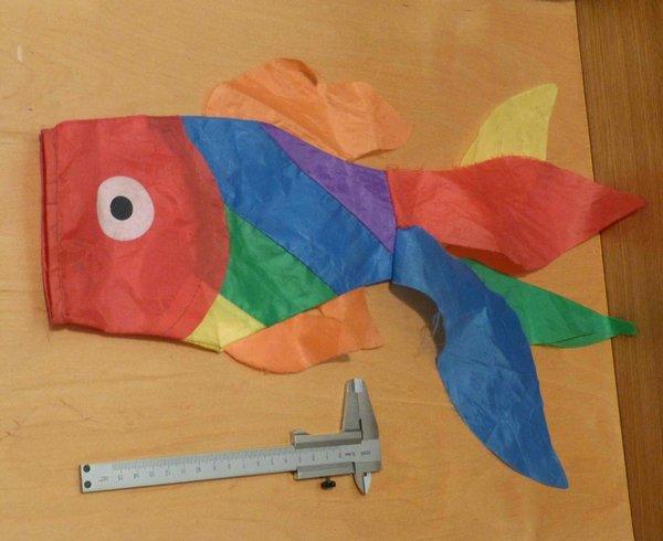 флаг рыба.JPG