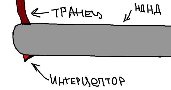 fishka_interceptor2.png