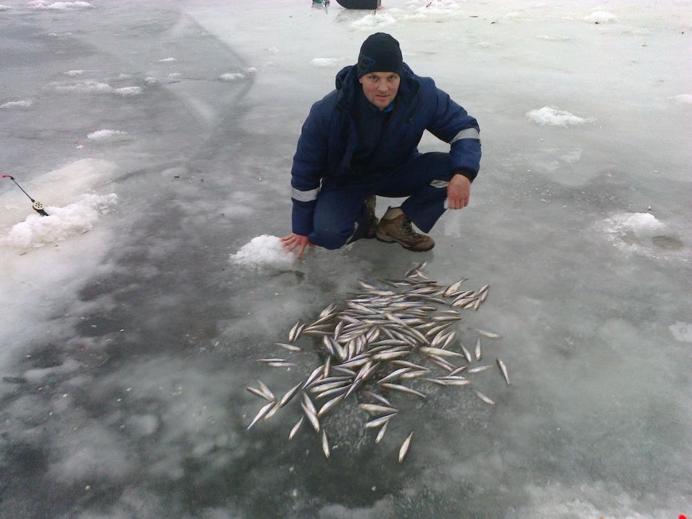 Рыбалка на дамбе петербург
