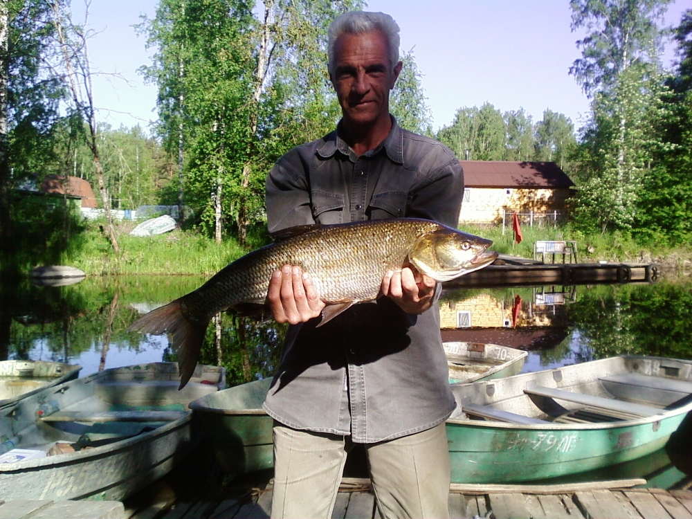 рыбалка в челябинской области новости с водоемов форум