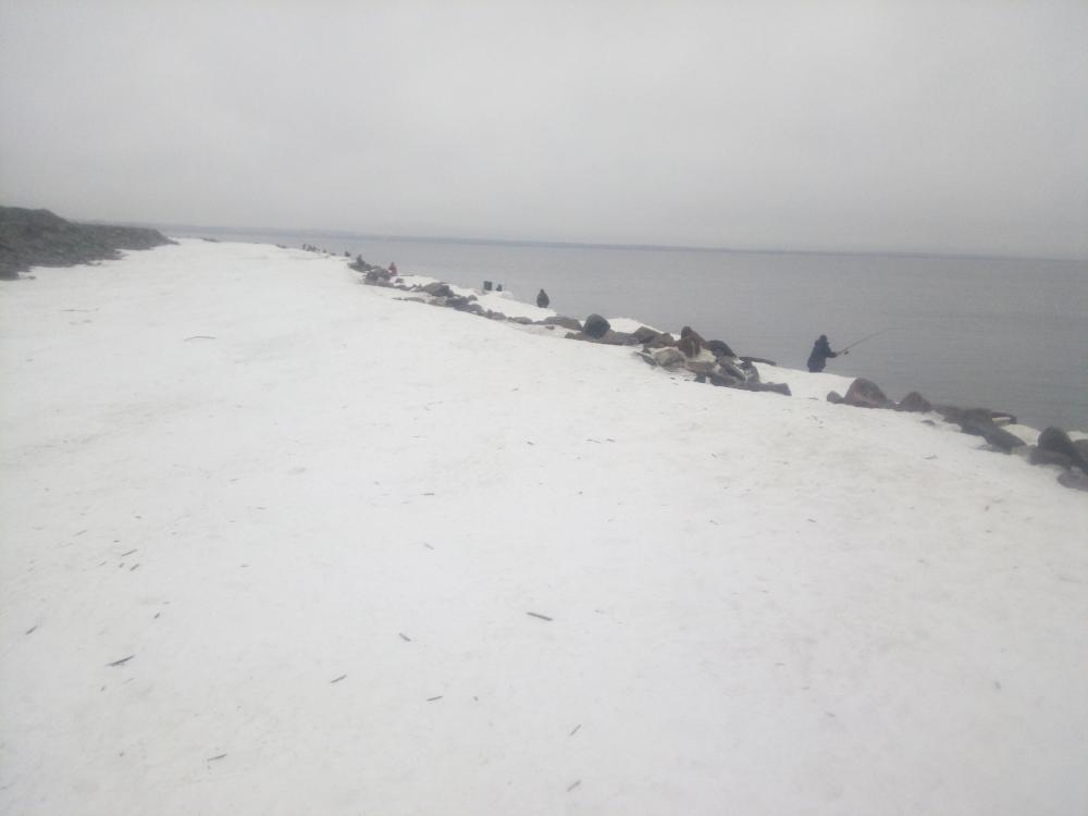 рыбалка в приморске на финском заливе