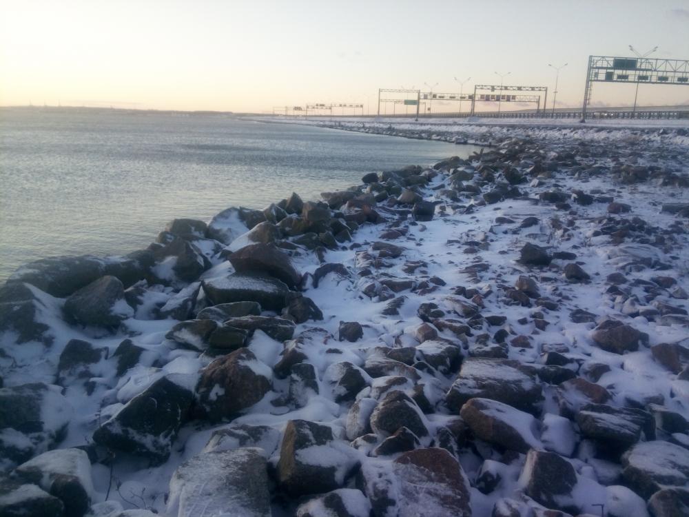лещ на фидер дамба финского залива