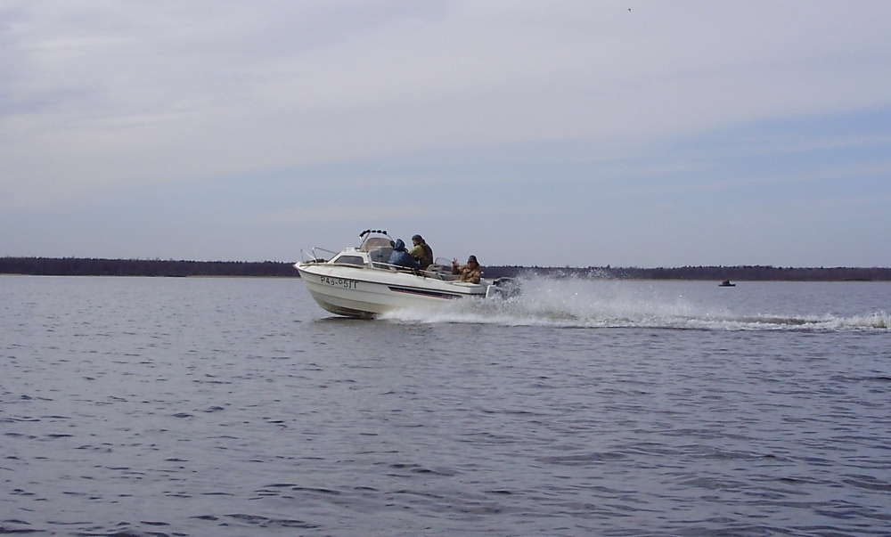 форум рыбаков дамба на финском заливе