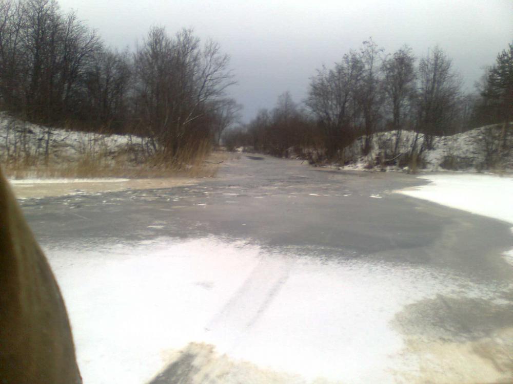 озеро белое рыбалка на карася