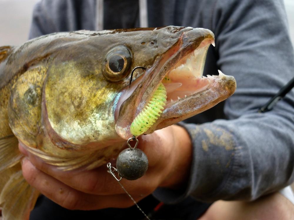 рыболовные водоемы в спб