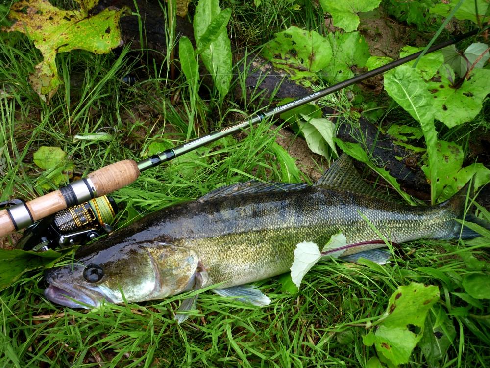 рыбацкие новости с водоемов