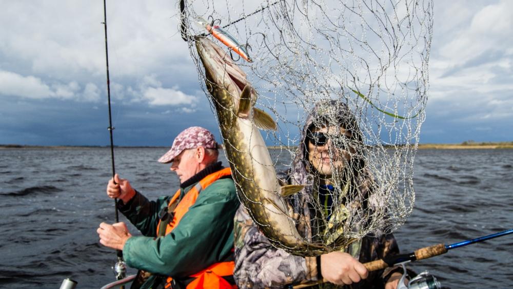 что нужно рыболову на рыбалке