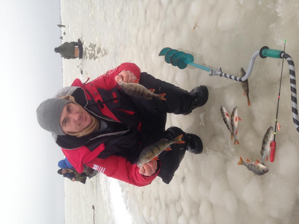 как добраться свежие новости с ладожского озера по рыбалке делать