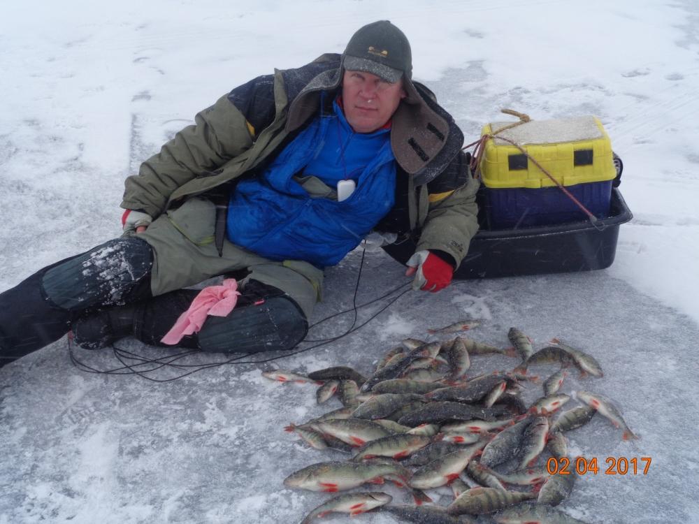 новости с водоемов питерский клуб рыбаков волхов 2016