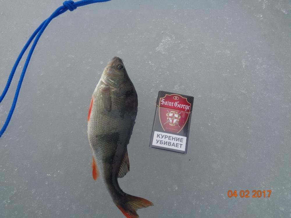 отчеты по рыбалке магнитогорск
