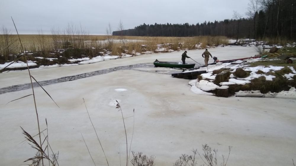 как ловить лосося в финском заливе