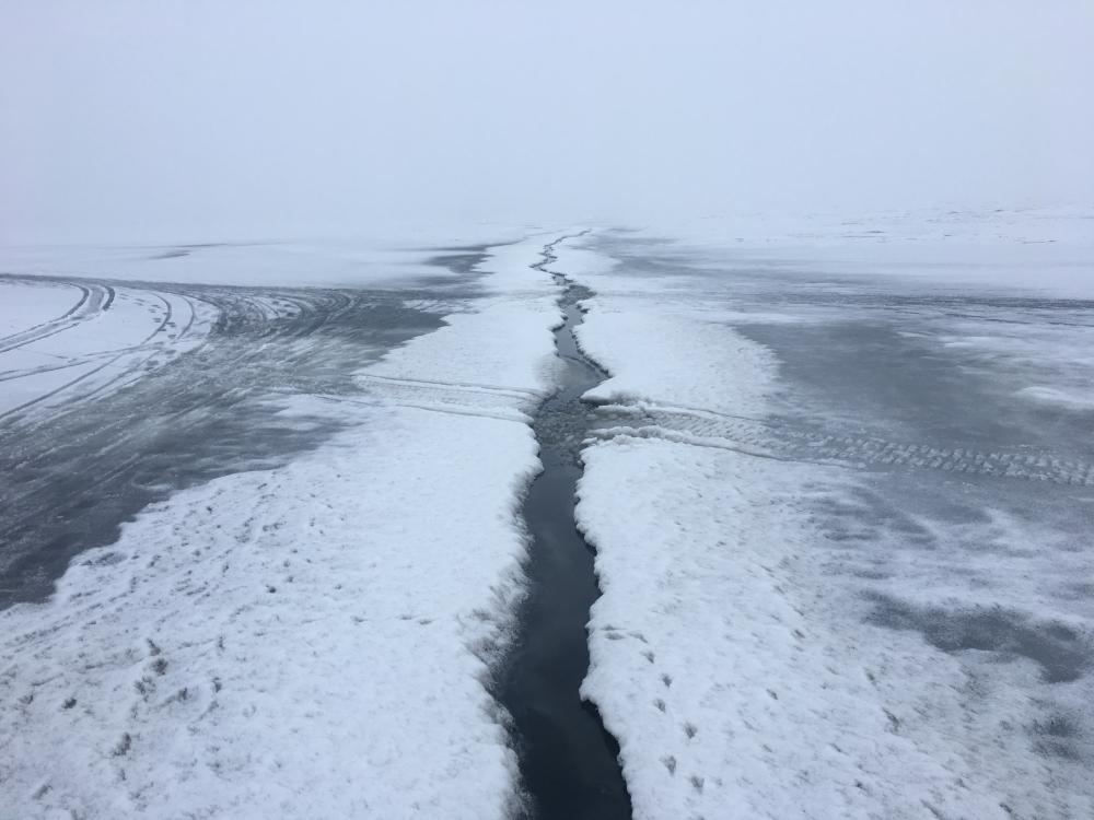 финский залив где и что клюет