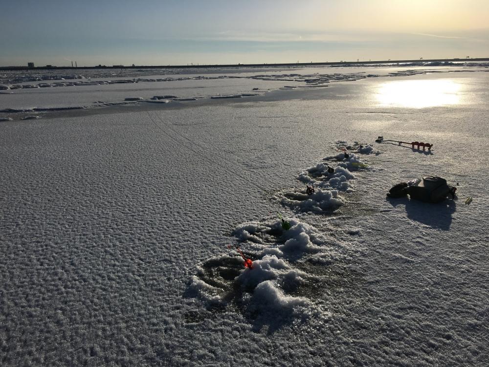 новости рыбаков в форуме с финского залива