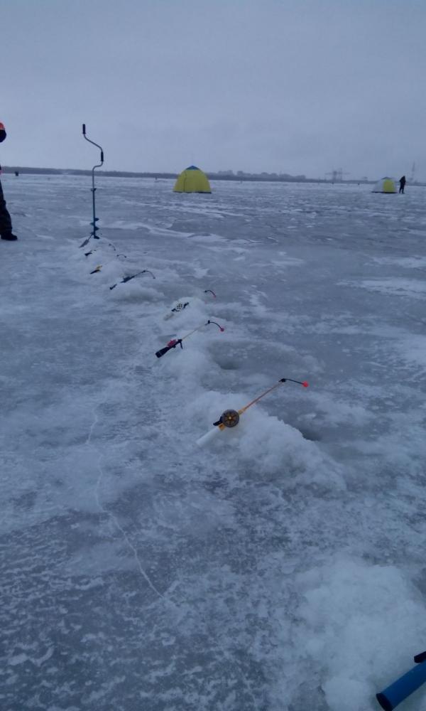 Особенности рыбалки на дамбе в Финском заливе