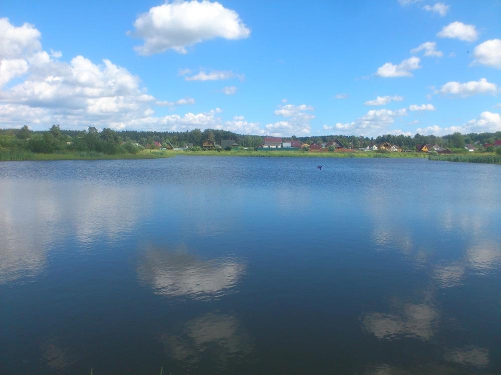 говоровский пруд рыбалка