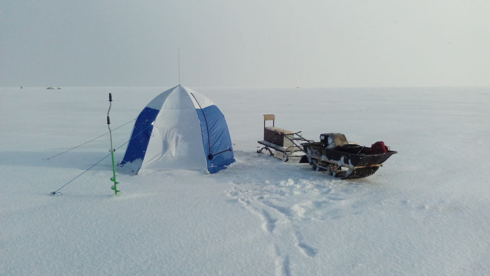 свежие новости с ладожского озера по рыбалке видеонаблюдение доме