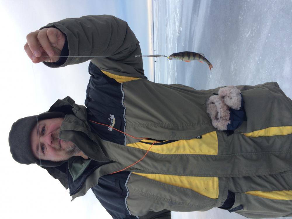 на что ловят рыбу на ладожском озере