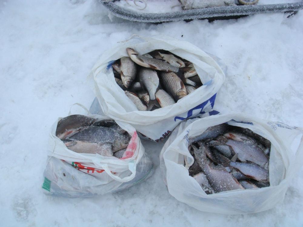 Ладога район свирицы рыбалка