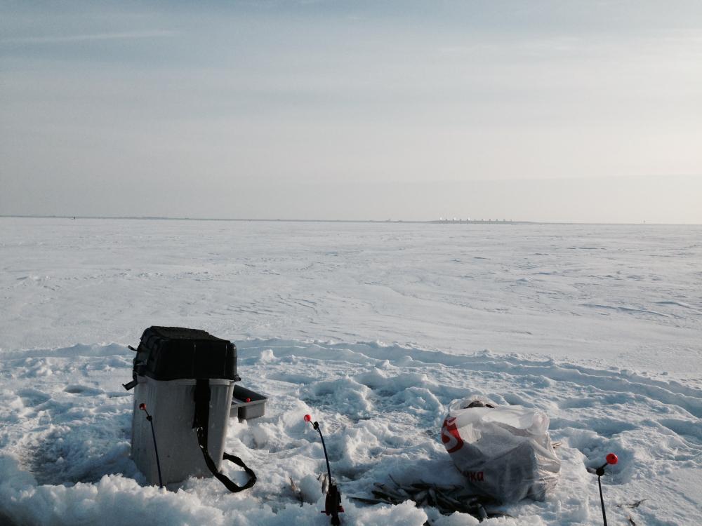Финский залив время рыбалки
