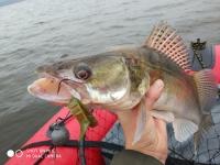 отчет о рыбалке на финском
