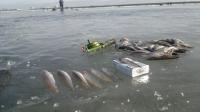 дамба финского залива форум рыбаков